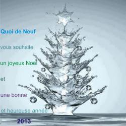 bonne-annee-2013-1.jpg
