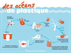 Fb sacs plastik