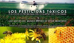 mars-abeilles.jpg