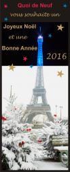 Qdn joyeux noel 2015